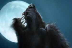 ¿Necesitas un Moderador en tu Show Erótico? Te  presentamos a WerewolfHH